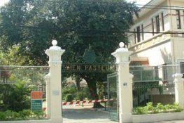 Lí giải thắc mắc: Bệnh viện Pasteur có làm việc chủ nhật không?